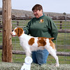 4th Place<br /> Shiloh 'N Swift River's It's About <br /> Owner: Pennie Peterson<br /> Handler: Michael Frane