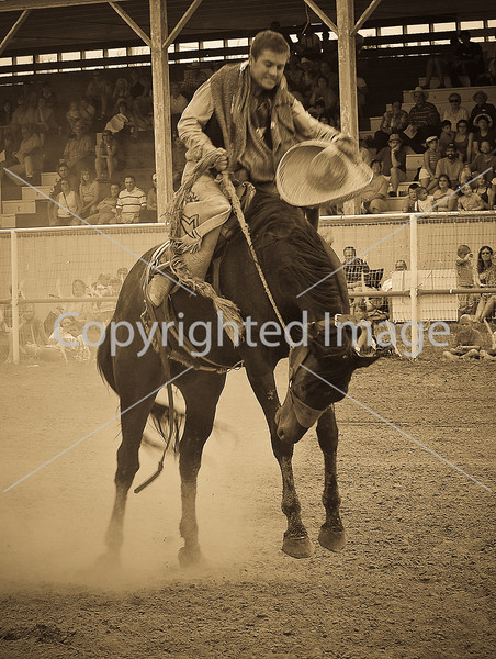 Scott Emerson, Raymond Stampede Wild ride Contest.