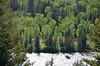 Raft on the Snake River at Snake River Overlook