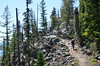 Up the horse trail around Jenny Lake (Ranger Jake said it was an easy hike with just a few ups and downs)