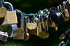 ... and more Lovelocks