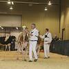 Westerner16_Holstein_IMG_4132