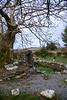 St. Brigid's Holy Well, in Killare, Co. Westmeath [near the Hill of Uisneach].