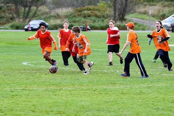 Westmount Soccer-1