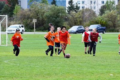 Westmount Soccer-2