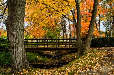 Bridge Near High School Sports Fields