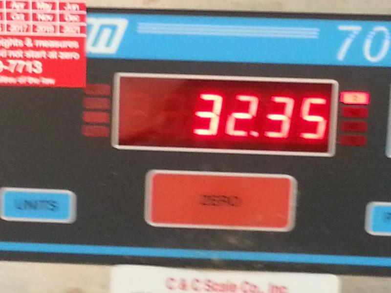 Striper's official weight.