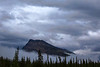 Misty Morning on the Icefields Parkway