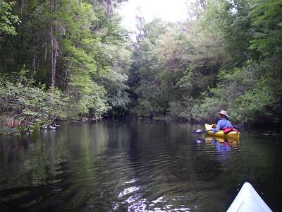 Hillsborough River, Florida - April 2010