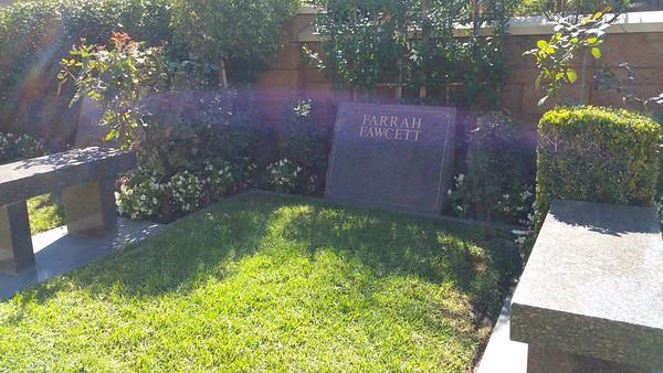 Farrah lives next door to Rodney Dangerfield..she died 2009