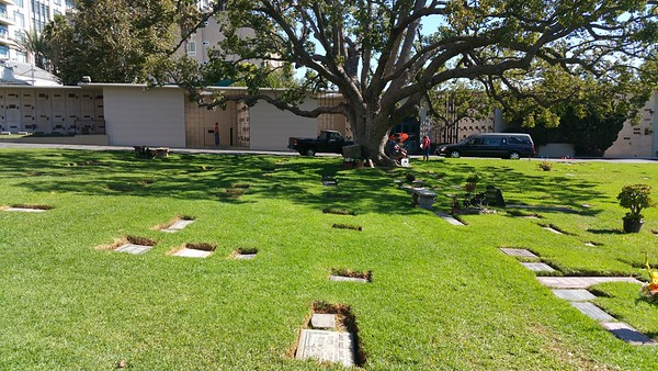 The other three crypts..the gated one to the left is Peace,then the middle one where Dean Martin is love then Remember on the right by the Hearse.