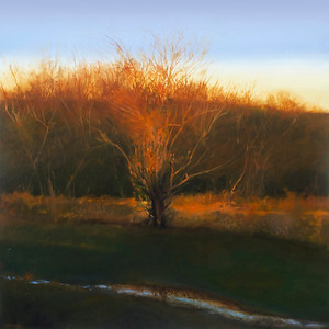 """Fire Tree 2"" (oil on canvas) by Cap Pannell"