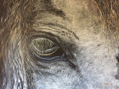"""Grey"" (oil on canvas) by Crista Bromley"