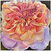 """Blossom.No.37"" (mixed media) by Yanhe Liu"