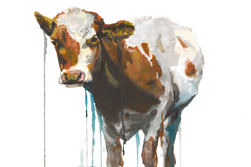 """Cow"" (watercolor) by Ashley Arey"