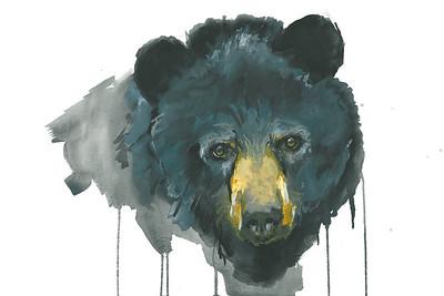 """Black Bear""  (watercolor) by Ashley Arey"