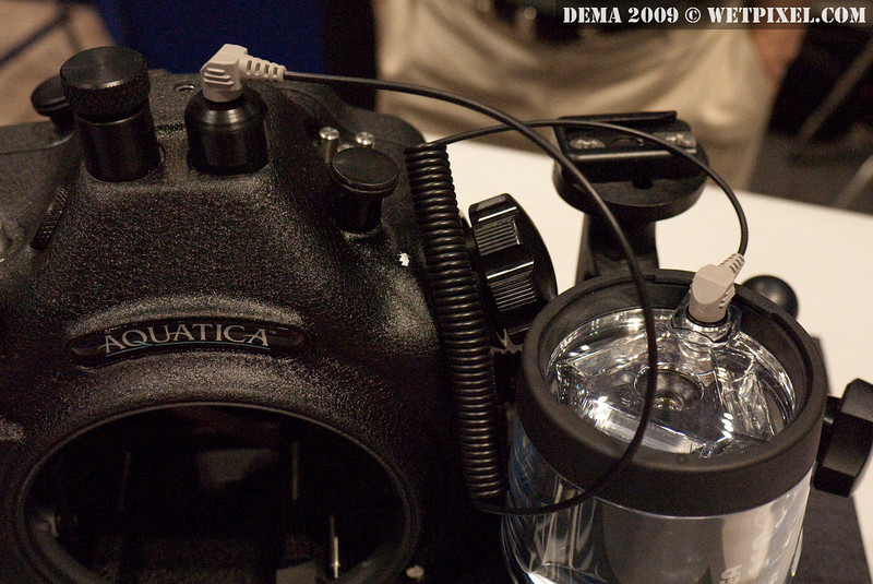 Aquatica AD300s housing for Nikon D300s. Note the fiber bulkhead.