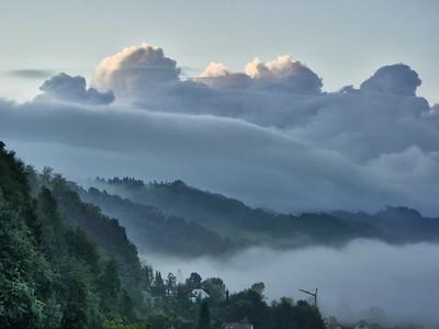 Nebelsuppe | Fog soup