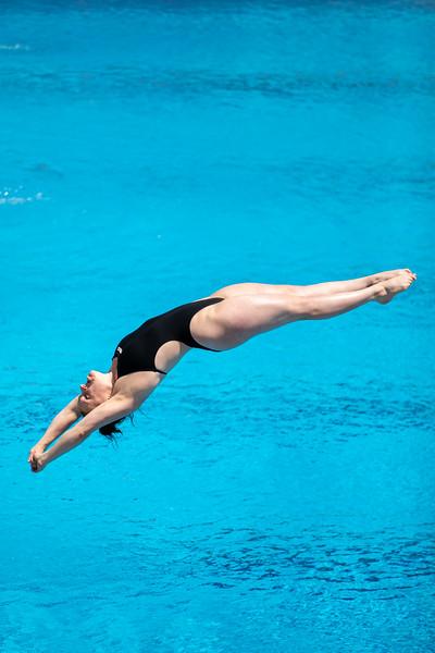 Wasserspringen: Rother im Finale