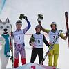 Skicross Männer