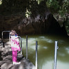 Waitomo Glow Worm Cave