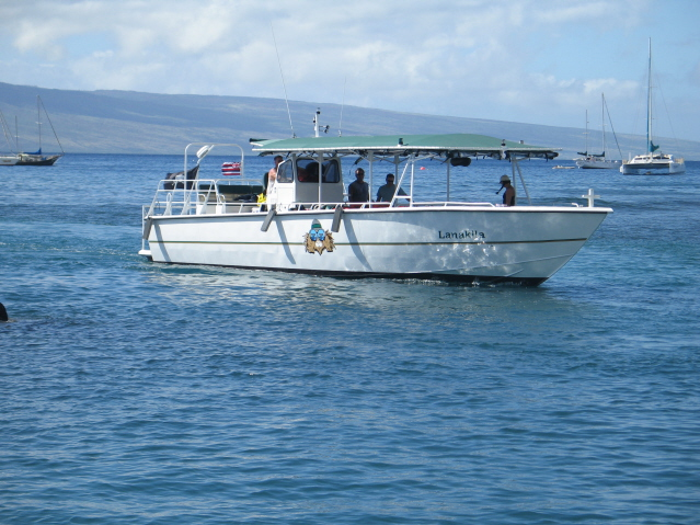 "<a title=""Make a reservation for Safari Boat Excursions, Whale Watch 90 Min Noon Special with Tom Barefoot's Tours"" href=""http://www.tombarefootshawaiitoursactivities.com/product.php?id=3205&name=Whale_Watch_90_Min_NoonSpecial"">Safari Boat Excursions, Whale Watch 90 Min Noon Special </a>"