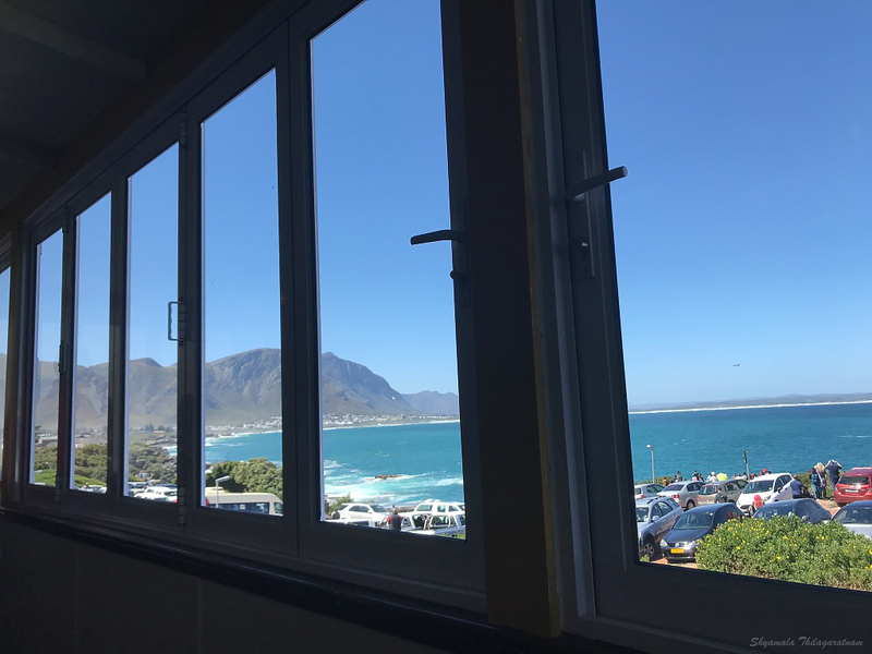 Table with a view - La Pentola, Hermanus