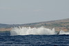 splashdown after humpback whale breach (8 in sequence of 9), Megaptera novaeangliae, in Maui, Hawaii , Central Pacific Ocean