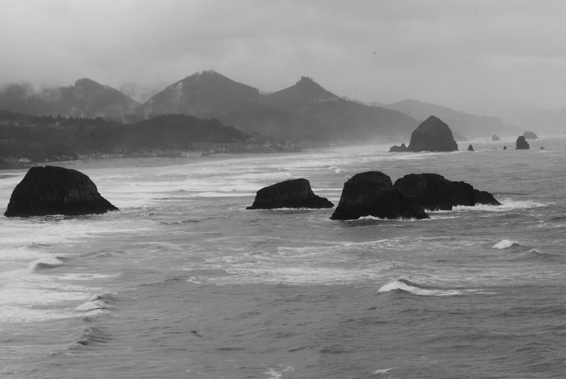 Saturday, kind of wet and windy at Ecola SP