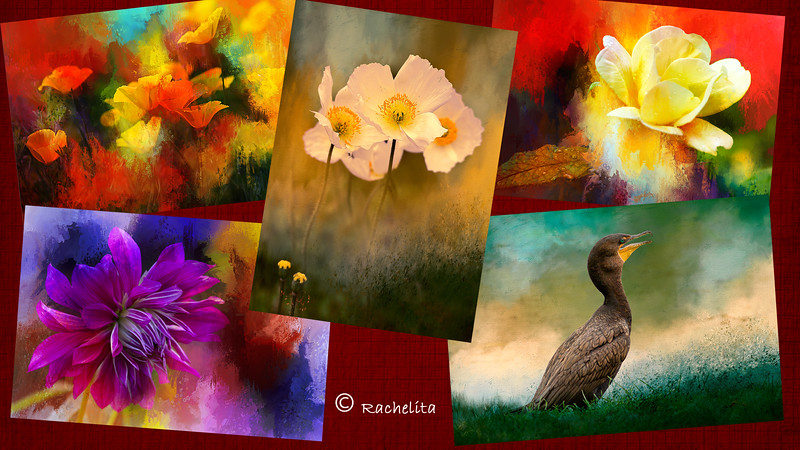 collage artistic creations-2