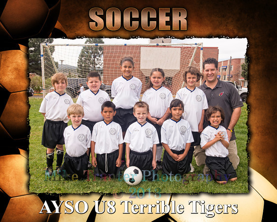 Terrible Tigers