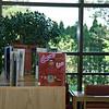 20080708Ferndale library13