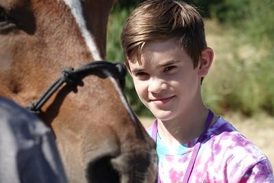 Horses 082