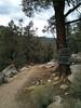 Entering the South Sierra Wilderness.