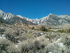 Mt. Whitney from the National Recreation Trail.