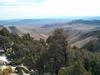 Morris Peak summit view.