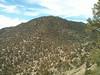 Morris Peak.
