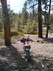 "The Honda CRF-250L at the Smith Mountain ""trailhead."""