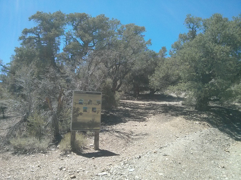 Telescope Peak Trailhead.