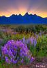 Heavenly Sundown  0115  w61