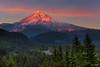 Mt. Hood Aplenglow 9528 w70