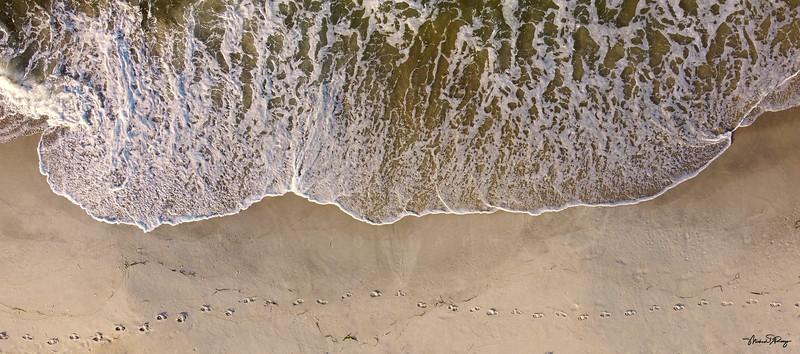 Footprints 0078 w68