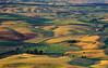 Steptoe Butte Scenic 6785 w54