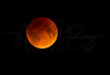 Eclipse Moon 4737 w55