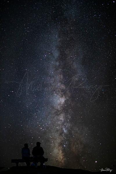 Star Gazing  6697 w67