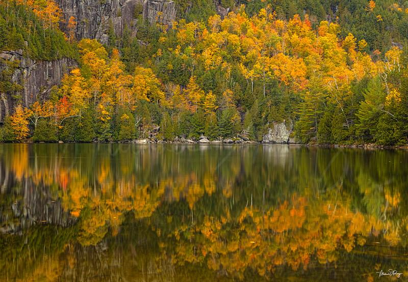 Autumn Reflection 6894 w69
