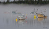 Foggy Harbor Scene 0529 w63