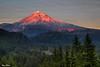 Mt. Hood Alpenglow 9528 w54