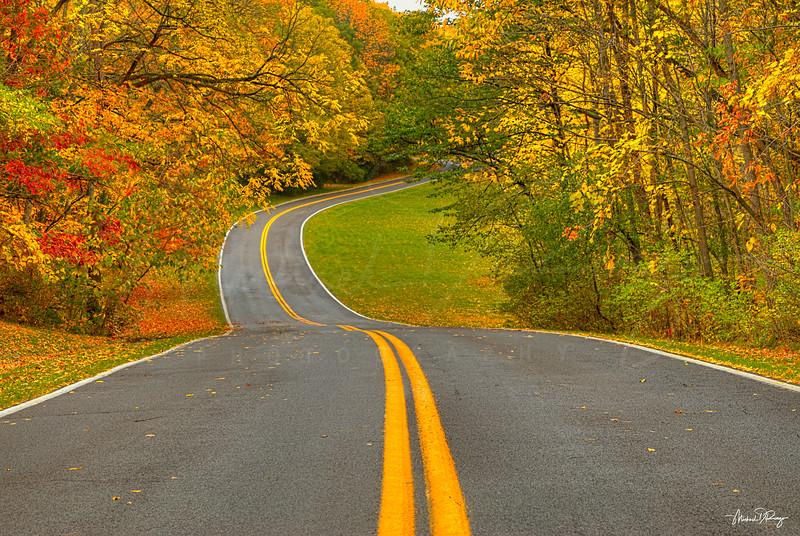 Autumn Highway 7593 w69