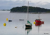 Lubec Maine Harbor 0536 w63
